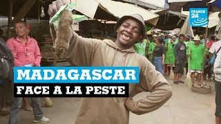 Madagascar face à la peste