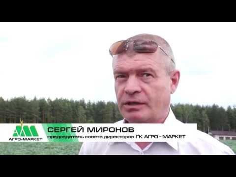 Агро-Маркет Картофельный спас