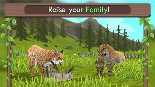 WildCraft: Animal Sim Online 3D // Finding a Mate & Hunting // [Gameplay]#2 [Wolf]