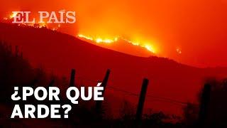 """Por qué los grandes incendios como el de Galicia serán """"la norma""""   Vídeo"""