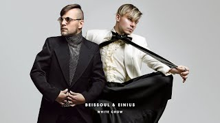 Beissoul & Einius - White Crow LP (Full Album 2019)