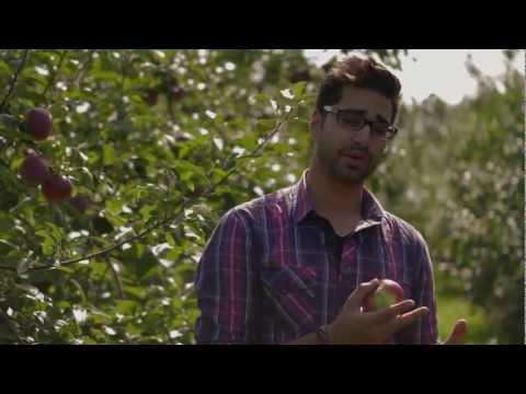 Savouring a Fresh Apple Pie and Coffee at Quinn Farm