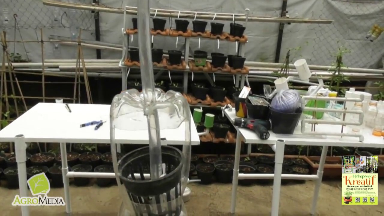 Membuat Instalasi Hidroponik Botol Dan Pipa Pvc