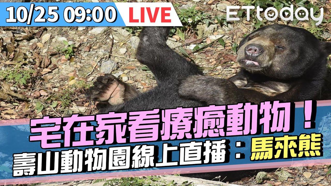 【LIVE】10/25 宅在家看療癒動物!壽山動物園線上直播:馬來熊|ETtoday寵物雲