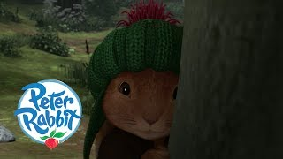 Peter Rabbit - A Ghost in the Forest | Cartoons for Kids