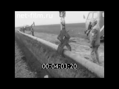 1986г. совхоз Победа Октября Суровикинский район Волгоградская обл
