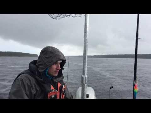 отчет о рыбалке на рыбинском водохранилище 2017