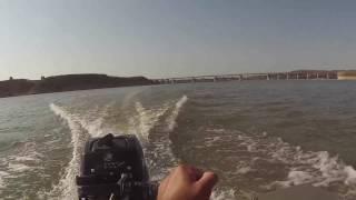 meerval vissen op de EBRO cat gryllz - 03 - HD 1080
