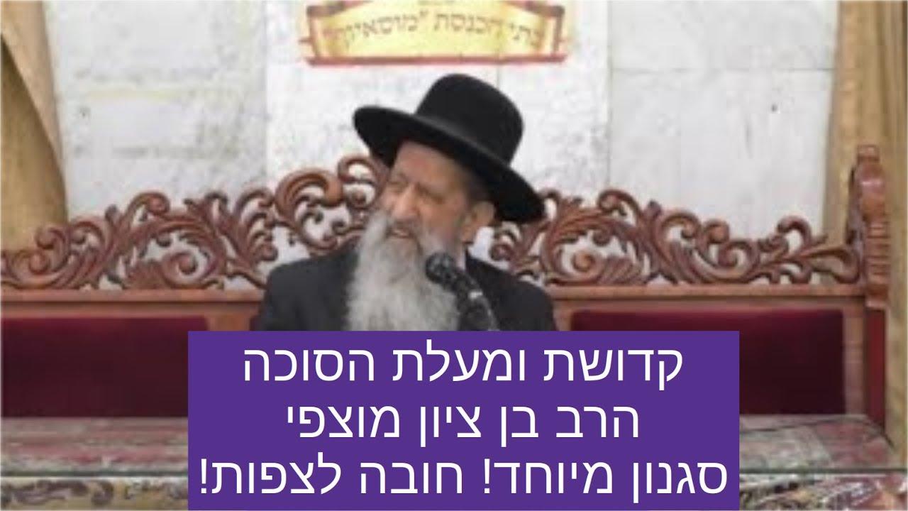 הרב מוצפי סוכות - שיעור ברמה גבוהה של הרב מוצפי על קדושת ומעלת הסוכה תשעח rabbi mutzafi sukkot