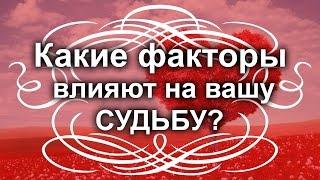 видео MDoctor: Тормоза в Лактатной Зоне (цикл