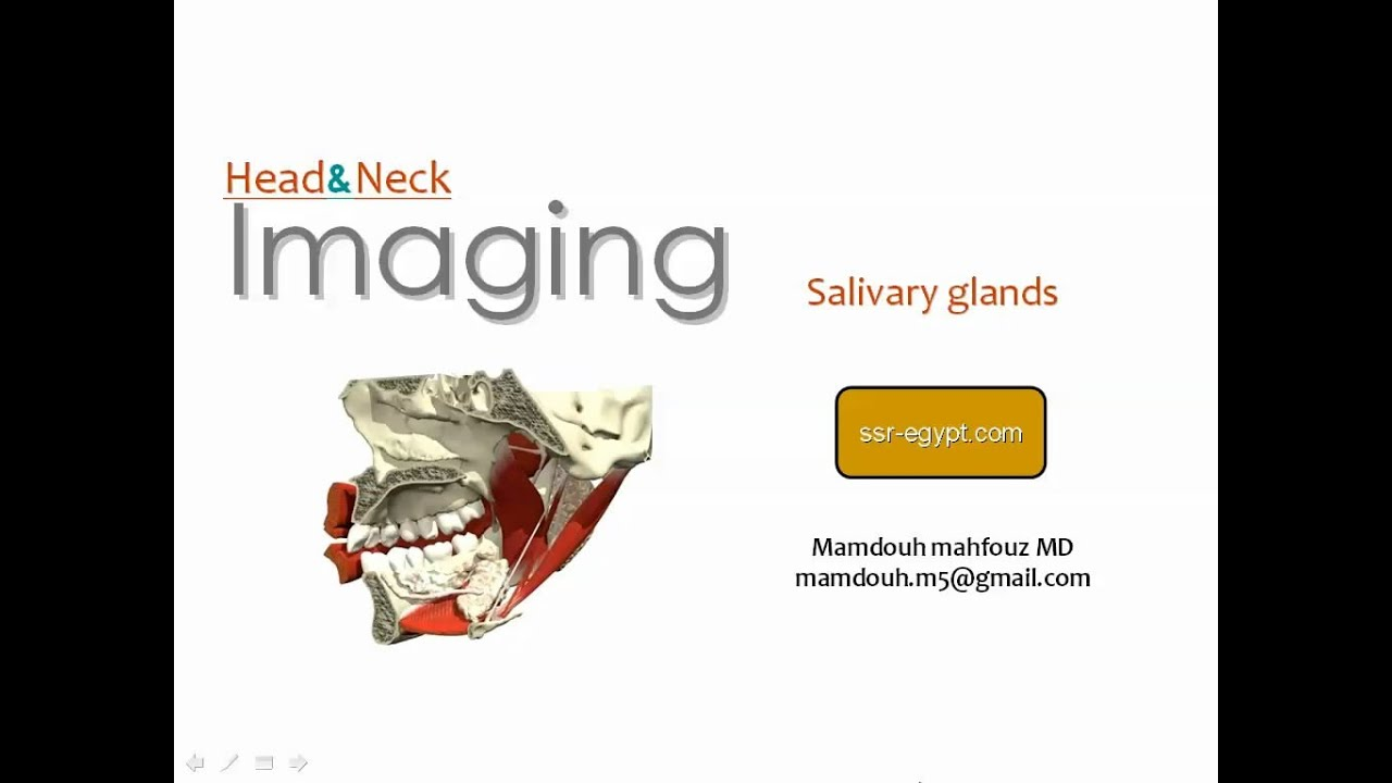 Imaging of Salivary glands - Dr Mamdouh Mahfouz - YouTube