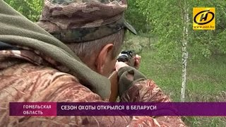 Летний сезон охоты открылся в Беларуси