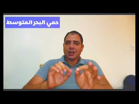 حمي البحر المتوسط Youtube