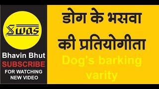 Dog/TOP 10 dog barking videos compilation 2016 ♥ Dog barking sound   Funny dogs