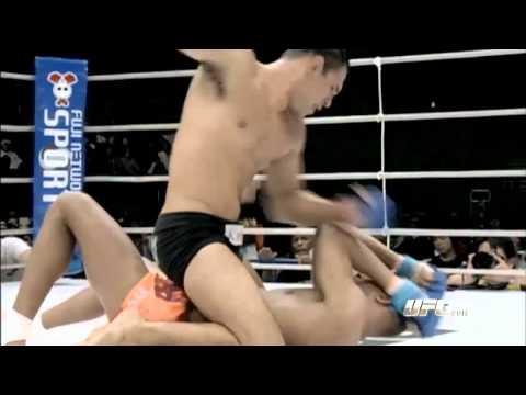 UFC Fight Night: Nogueira Vs Davis
