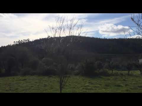 Land - 30 x 150m2 - Carvalhais, Nr. Penela