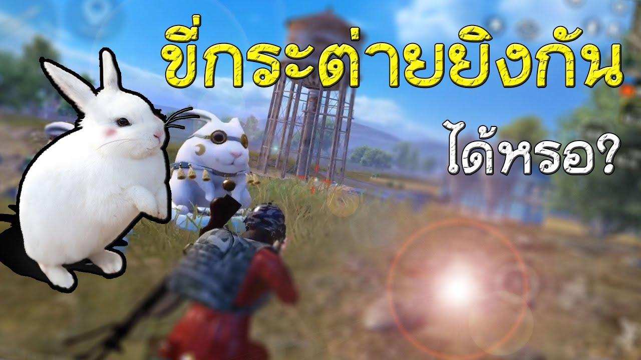 PUBG Mobile - อัพเดทใหม่ เกมพับจีมีขี่กระต่ายยิงกันด้วยหรอเนี่ย?