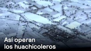 EXCLUSIVA: Drone capta huachicoleros ordeñando a PEMEX.