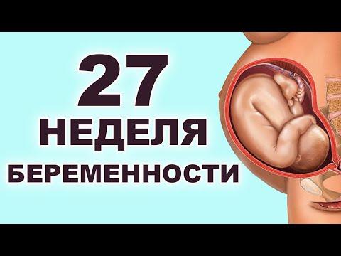Что происходит с ребенком и мамой на 27 неделе беременности?