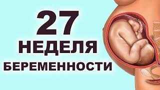 Что происходит с ребенком и мамой на 27 неделе беременности? 6 месяц беременности. Второй триместр.