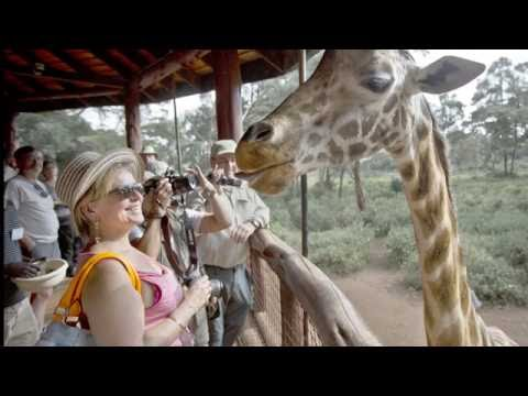 African Safari Tour Package : Don't Worry About The Details. Relax & We Take Care Of Everything