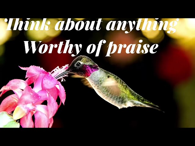 Think about anything worthy of praise