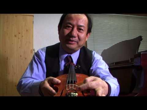 ~The Violin Sound Post by Daniel Olsen~