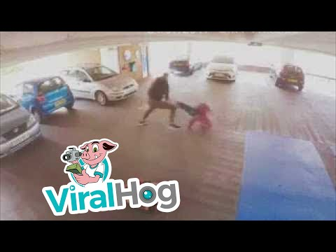 Thumbnail: MMA Fighter Catches Car Thief
