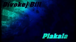 Divokej Bill   plakala lyrics