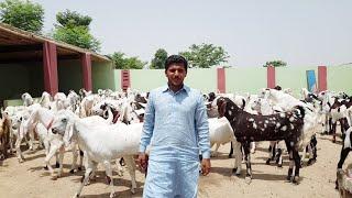 Slip Dera Ghazi Khan - Mariagegironde