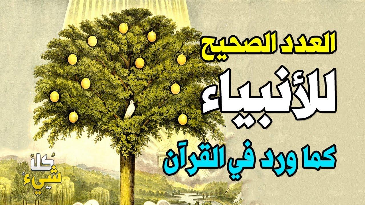 هل تعرف كم عدد الأنبياء المذكورة في القرآن الكريم وما هو معناها مؤثر جدا Youtube