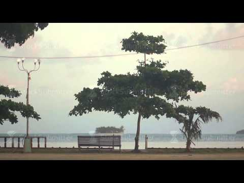 promenade with trees and a bench with an ocean backdrop