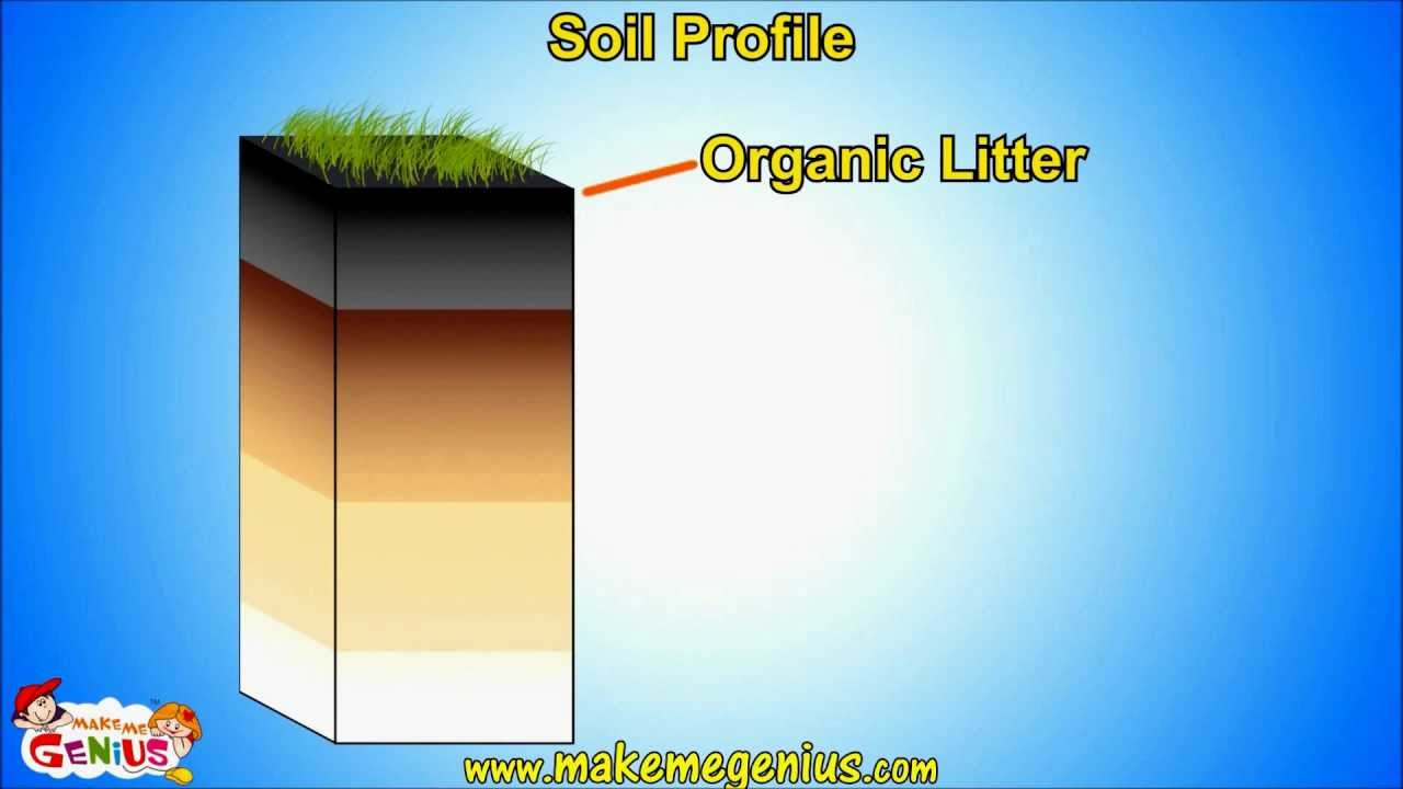 information about different types of soil