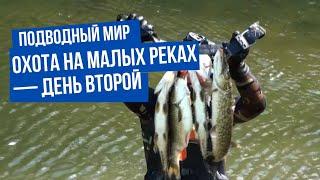 Подводный мир. Охота на малых реках — день второй
