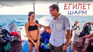 ЕГИПЕТ - Шарм Эль Шейх - Погружение с аквалангами, Daiving