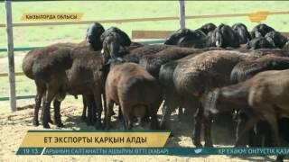 Қызылорда облысында ет экспорты қарқын алды