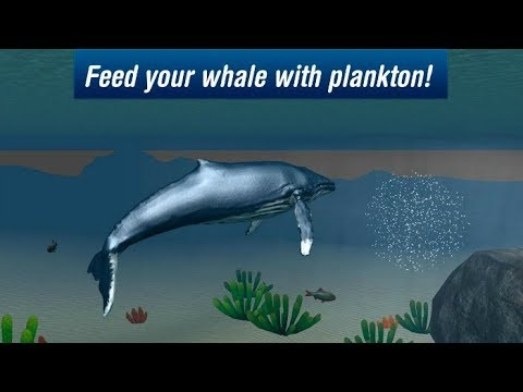 Ocean Whale Simulator 3D Gameplay Video Android/iOS