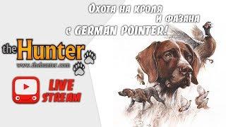 theHunter: Classic - Охота на кролей и фазана с СОБАКОЙ!
