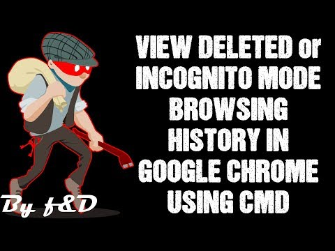 How To See Incognito History On Google Chrome | See Deleted History On Google Chrome Using CMD