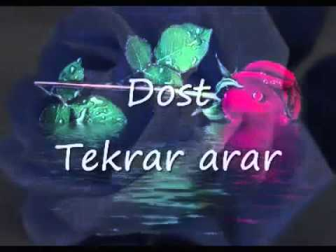 Yaxsi dost ve esil dost