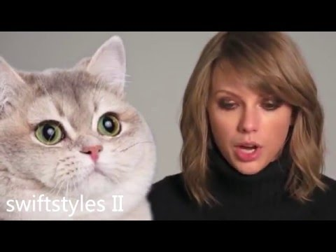 Taylor Swift - Funny Interview Moments