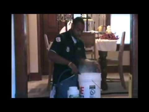 Pet Urine Carpet Cleaning Cedar Rapids Iowa City Des