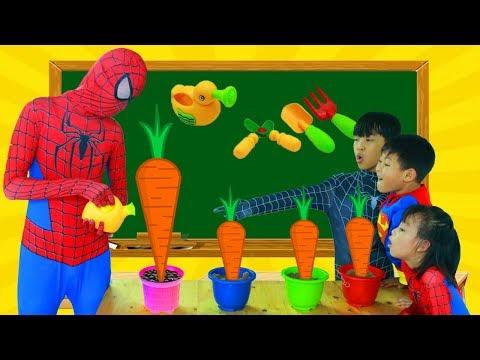 Spiderman is Farmer Superman Learn Color CARROT w/ Elsa paint CHOCOLATE Joker Lollipop School Color