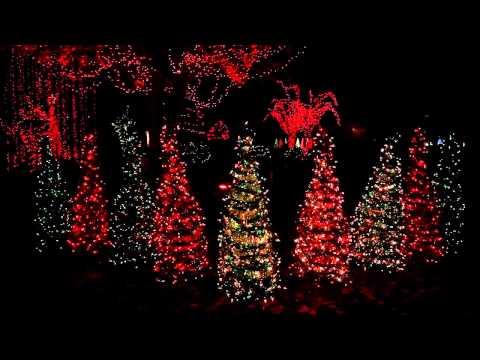 Dr. Law's Leaping Lights 2013 Christmas Display, Warner Robins, GA