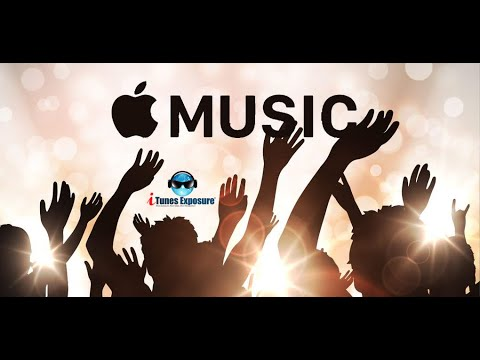 Music Promotion Companies In  Chicago