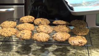 Cranberry Oatmeal Cookies By Magdi