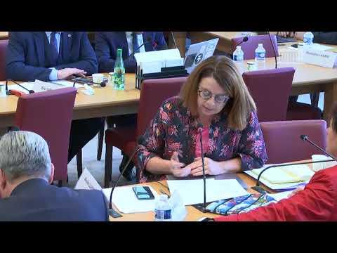 Commission des affaires étrangères : Droit international humanitaire à l'épreuve des conflits