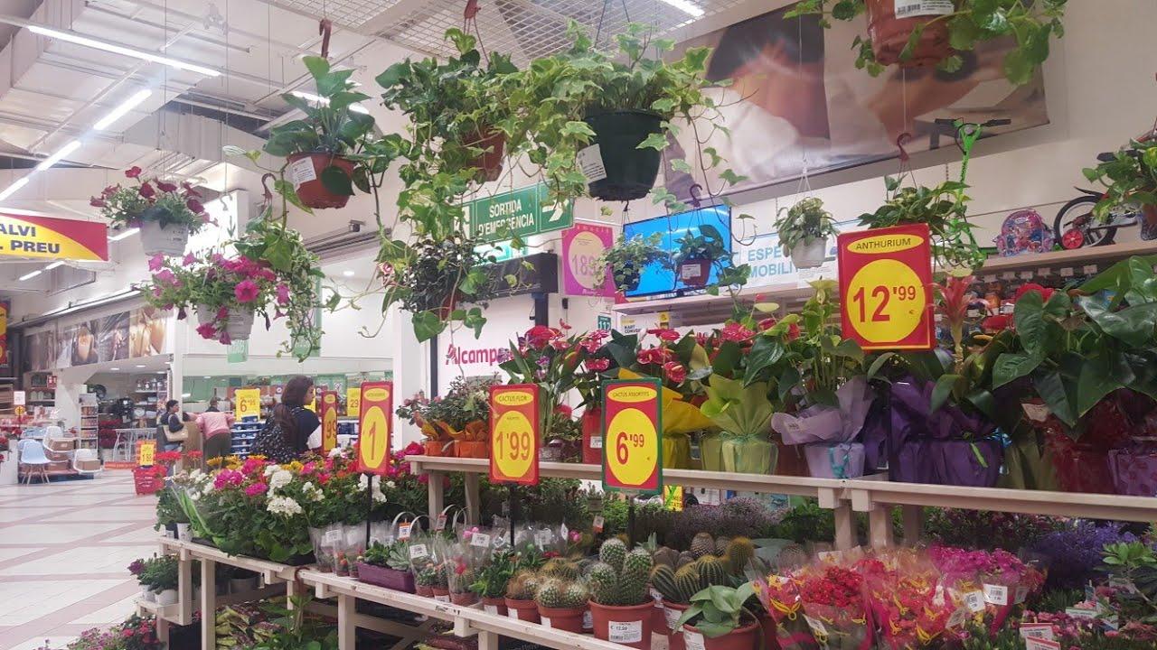Цветы в магазине ашана отзывы