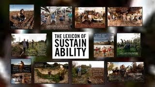 A Journey Through The Lexicon Of Sustainability