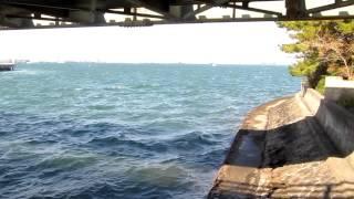 潮見橋 東岸高架下 鮎の遡上狙いシーバス釣りポイント 埠頭 天白川